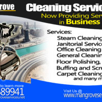 Overcome Difficulties To Remove Cobwebs Using Spring Deep Cleaning
