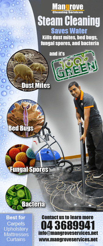 Deep Cleaning With Steam Reduces Need For Pest Control