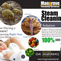 Month of May, 2014 and Mangrove Cleaning Services Dubai